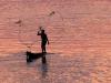 La pêche au poisson chat