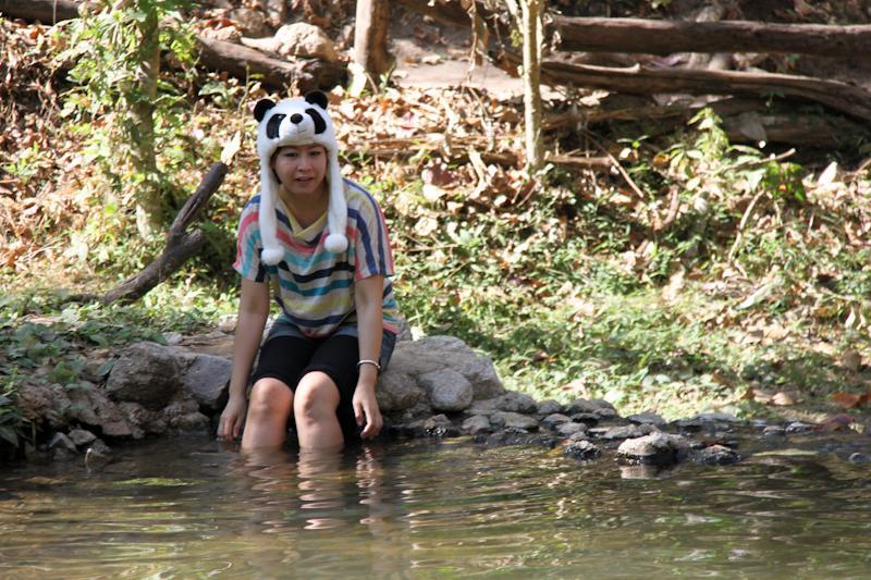 Panda aquatique