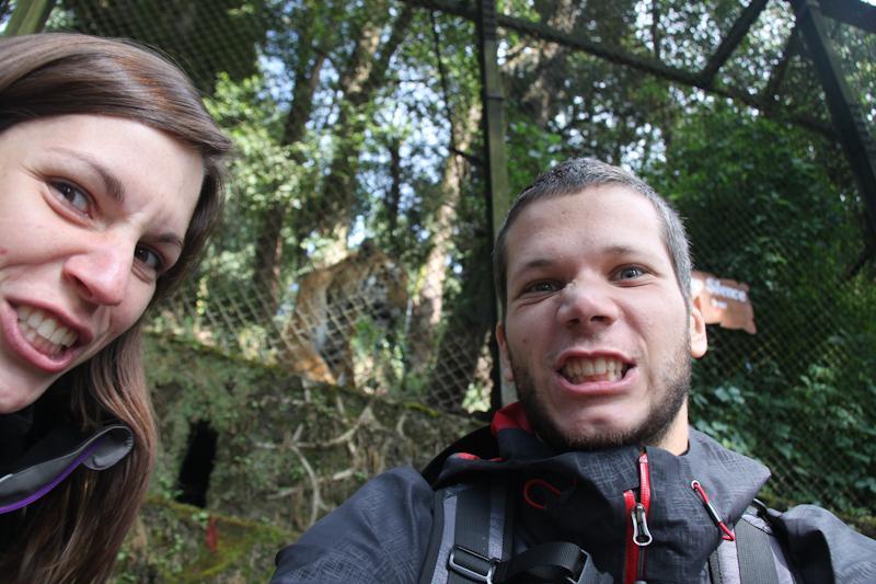 Nous et le tigre prise 108