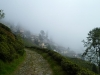 Darjeeling dans la brume