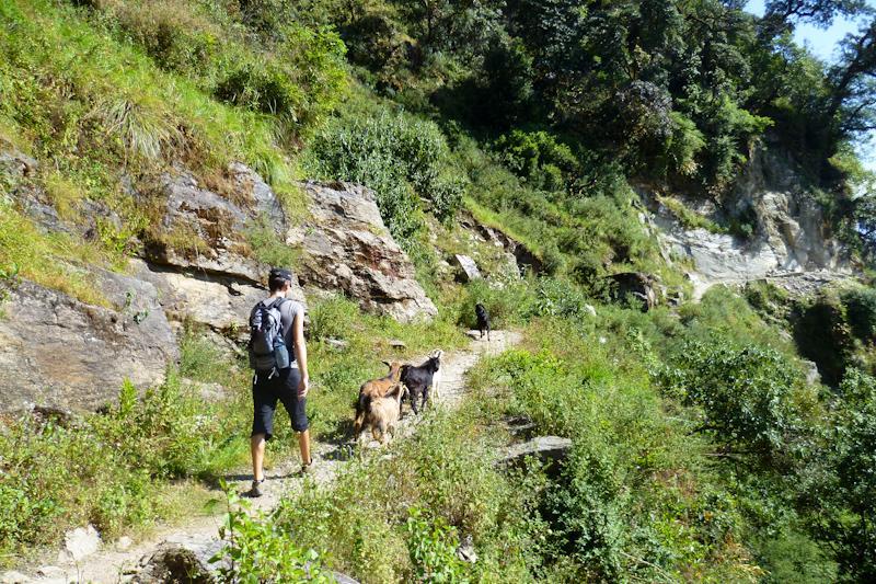 kathmandu-trek-17