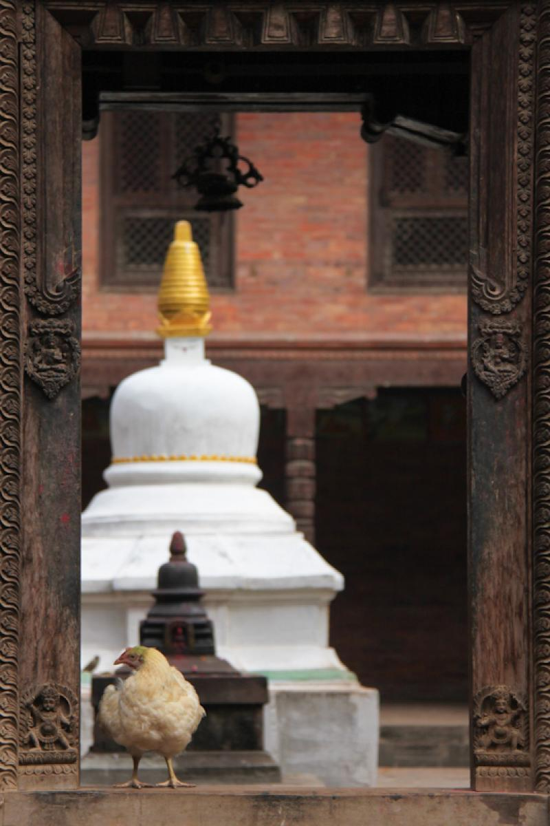 kathmandu-valley-10