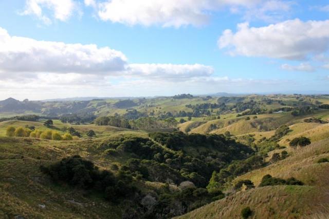 Le pays des Hobbits