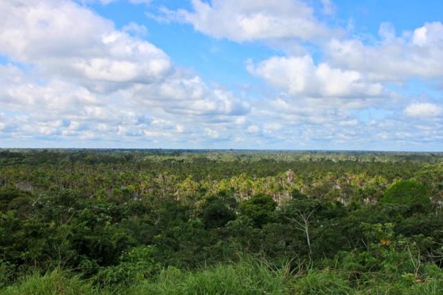 Vue sur l'Amazonie
